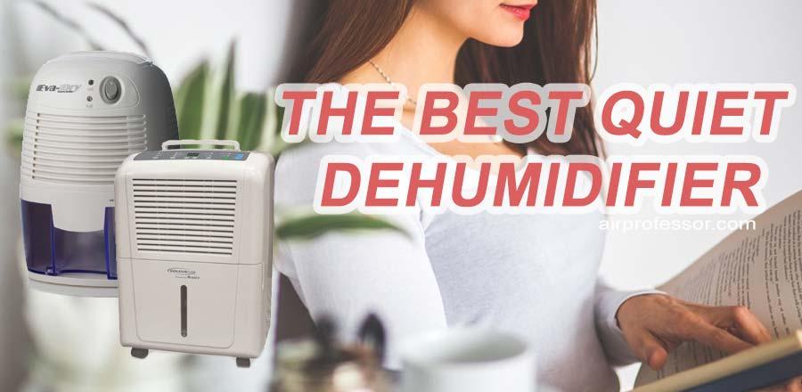 Best Quiet Dehumidifier