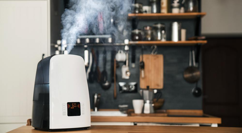 The 6 Best Filterless Humidifier Of 2019 Reviews By Airfreshly