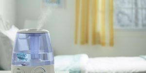 Best Humidifier For Sinus Problems